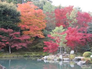 Tenryuji2011112703